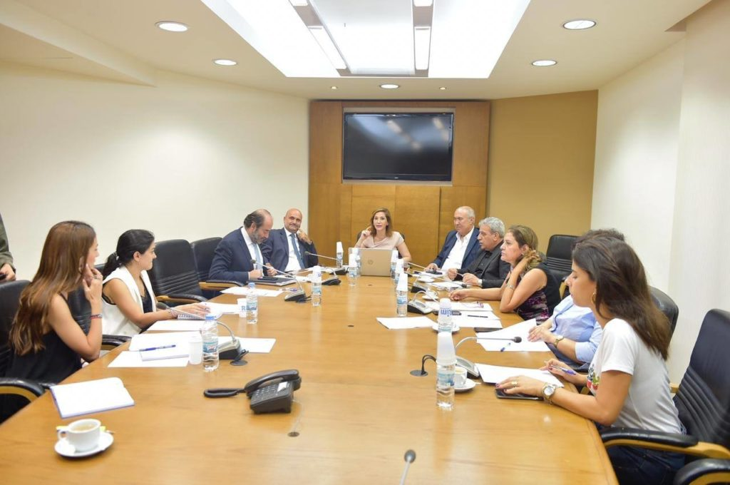فؤاد مخزومي خلال لجنة التنمية المستدامة البرلمانية